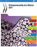 Entrepreneurship at Glance 2017